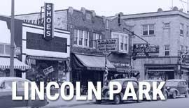 MEDC Report - Lincoln Park